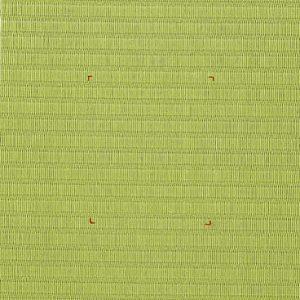 退変色比較試験 和紙製畳